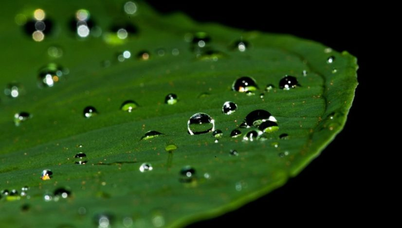droplets-195841_1920